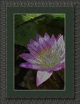 Water Lily (vertical)
