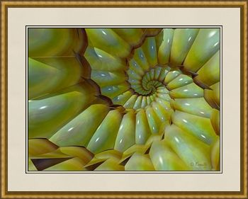 Shellfish Dream, a fine art giclee