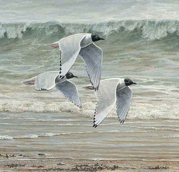 Pierre Leduc art print 'Au fil de l'eau II'