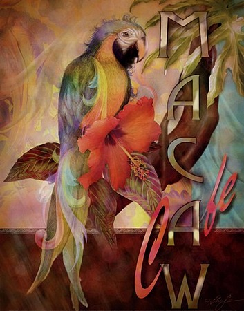 Macaw Caf� by artist Alma Lee. Art prints, posters, animal art; decor art; macaw, art prints; posters; from an original  painting