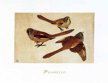 Art print �Tre Ciniallegre� by Antonio Pisanello; three birds