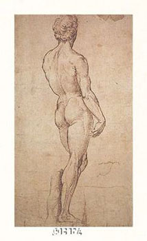 Art print �Nude Study� by Raphael Sanzio; a male nude from behind