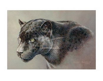 Shadow Hunter - Black Jaguar by artist Kalon Baughan. Art prints, animal art; wildlife art; from an original oil painting