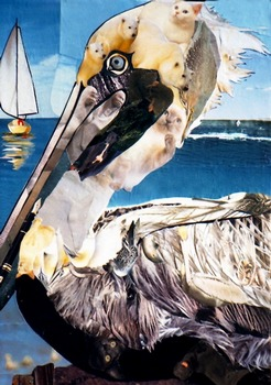 Pelican by artist Marjorie Pesek. Giclee prints, art prints, collage
